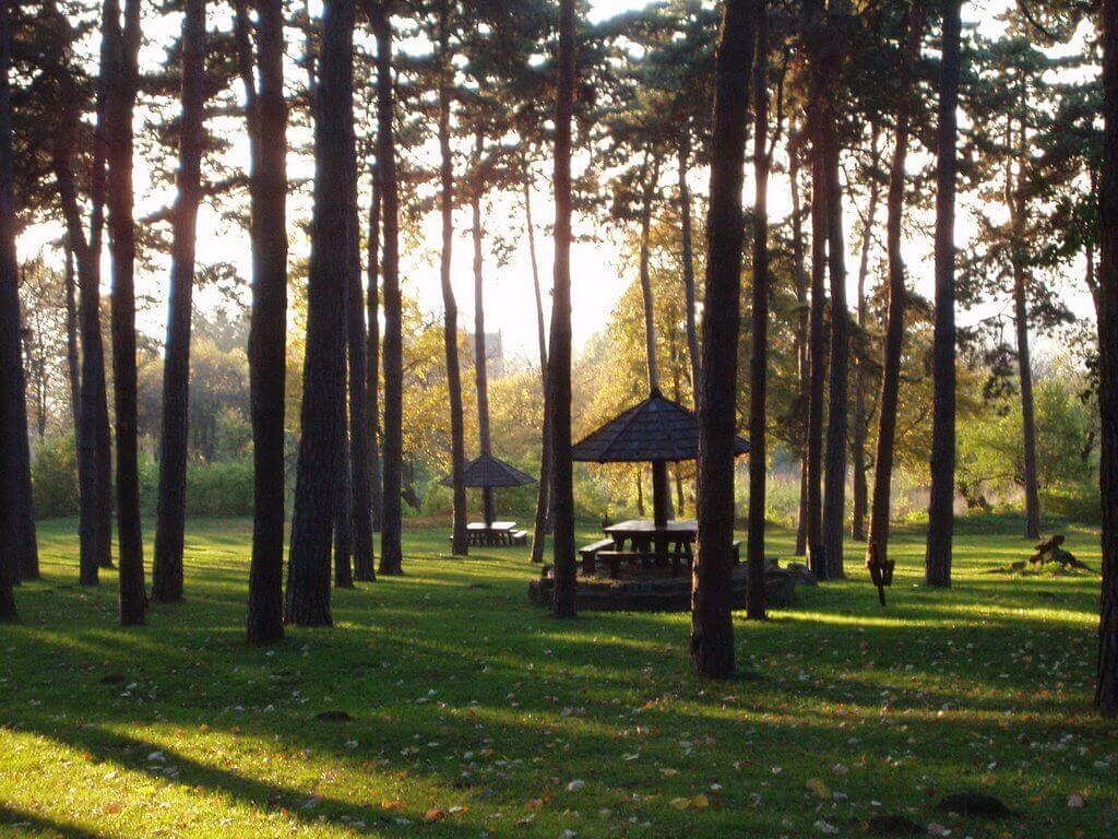avala-park1